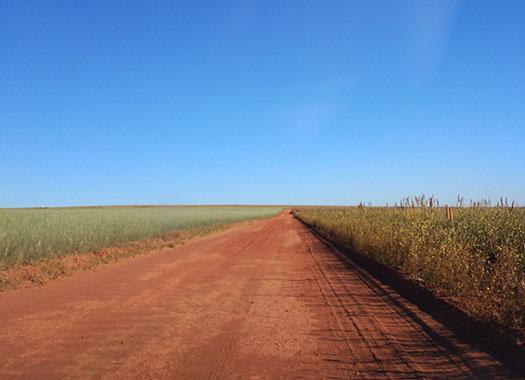 Estrada para a cachoeira perto de Brasilia