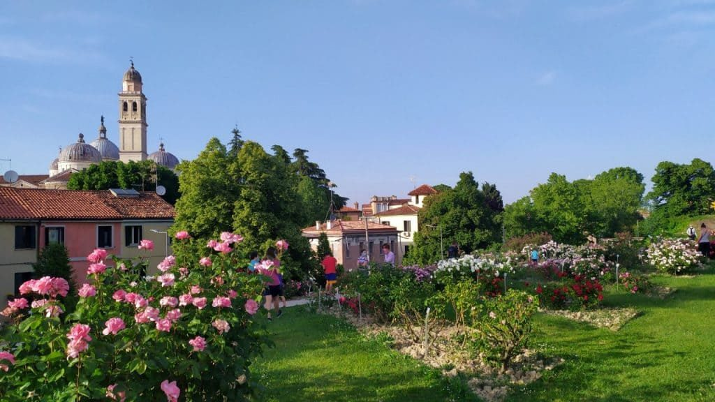 Vista do Roseto di Santa Giustina em Pádua, na Itália