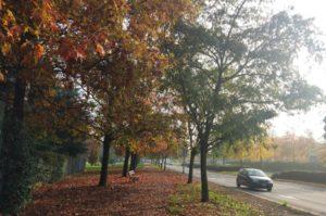 Paisagem de outono na Itália